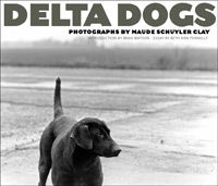 Delta Dogs