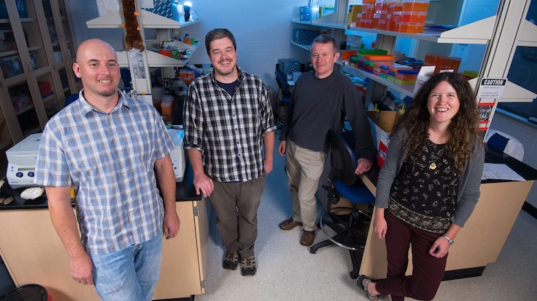 Two UM professors, Ryan Garrick (left) and Colin Jackson (third from left), are working in tandem with University of Alabama biological sciences professors Carla Atkinson (right) and Jeff Lozier on National Science Foundation awards studying the Earth's biodiversity. Photo by Kevin Bain/