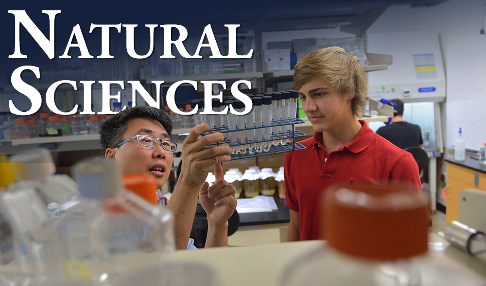 Study Natural Sciences