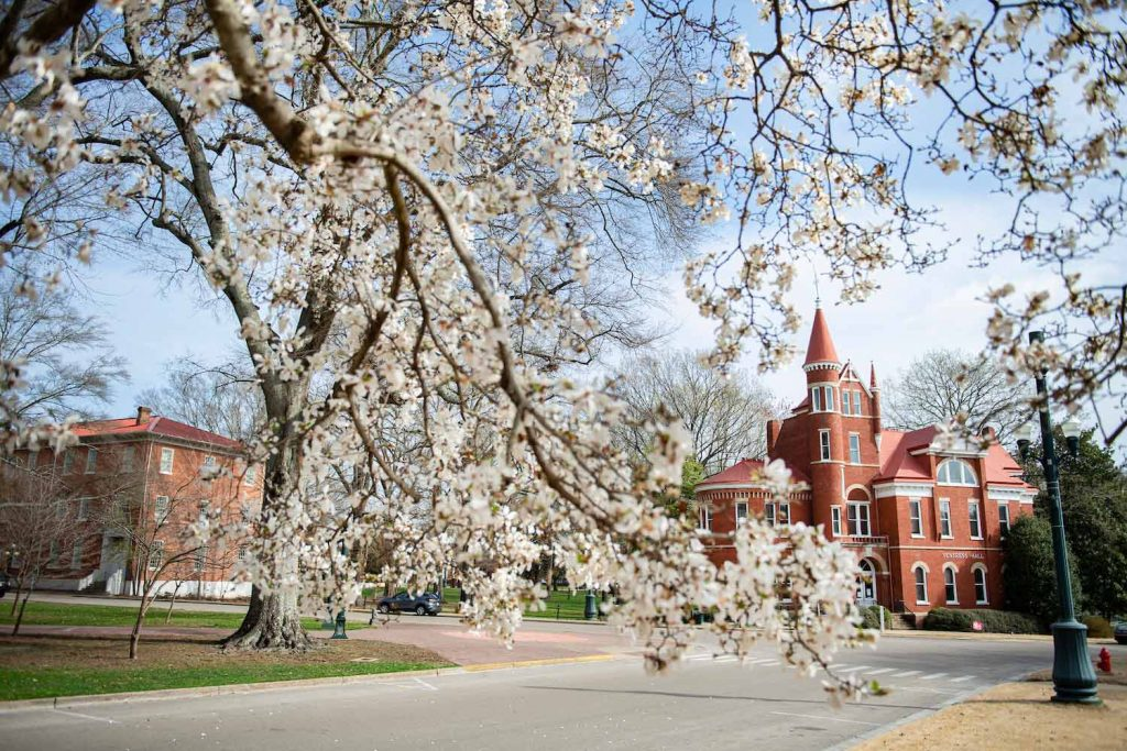 Campus Scenes; Ventress Hall framed by flower blooms in the Circle. Photo by Logan Kirkland/ Ole Miss Digital Imaging Services